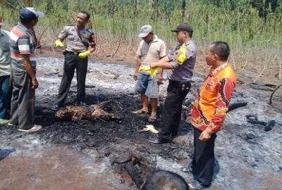 Ditemukan Pria Tewas Hangus Terbakar Didalam Gubuk