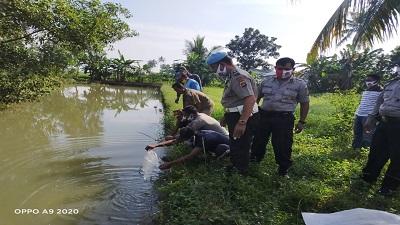 Polsek Punggur Menebar Bibit Ikan Lele Sebagai Program Ketahanan Pangan